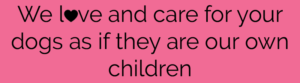 footer-text-love-care-dog-children